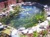 Iskustvennie-vodoemi-10.jpg