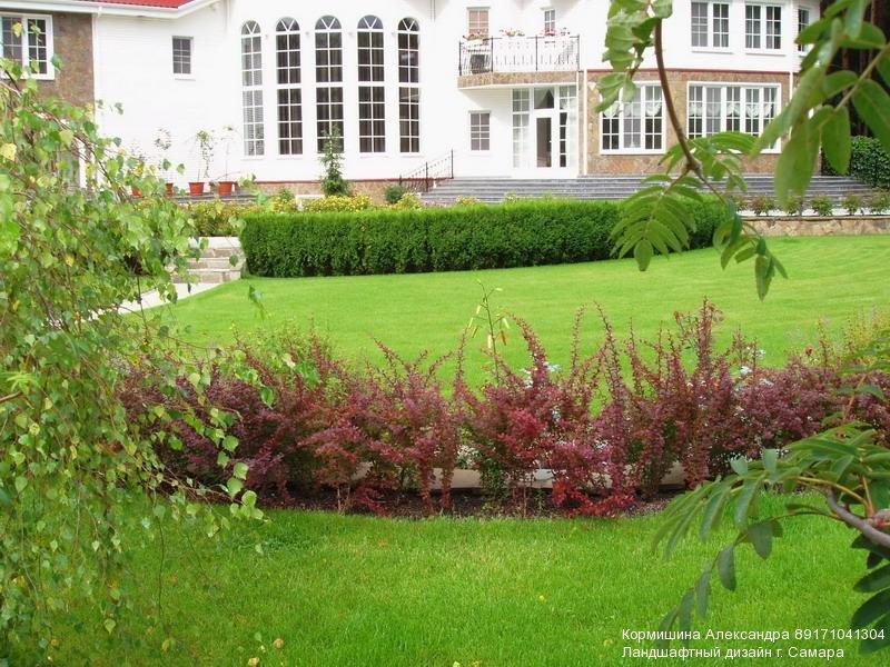 Фото ландшафтный дизайн школьного двора