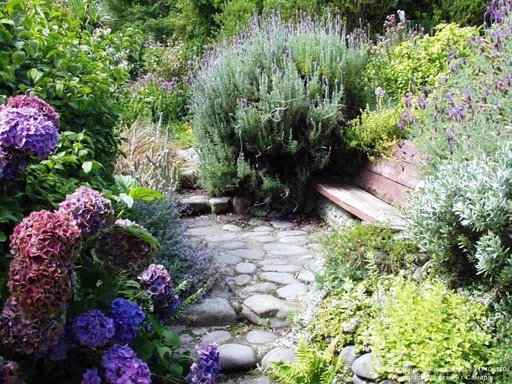 Для альпинария растения для